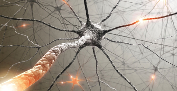 DARPA Is Trying Removal of Human Depression by Reading Brain Impulses