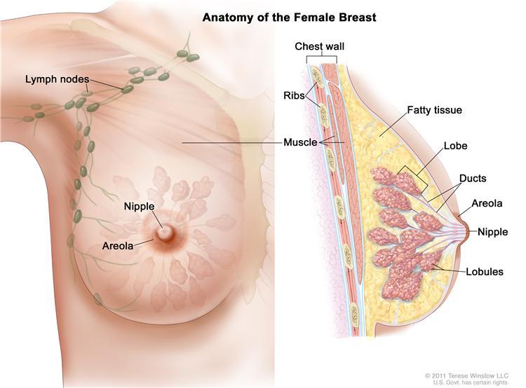 The Device that Will Revolutionize Medicine, Will Detect Breast Cancer