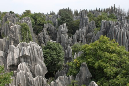 Stone Forest , China