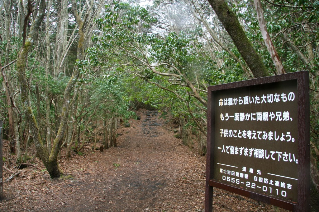 Aokigahara Forest Japan